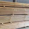 planken douglas hout